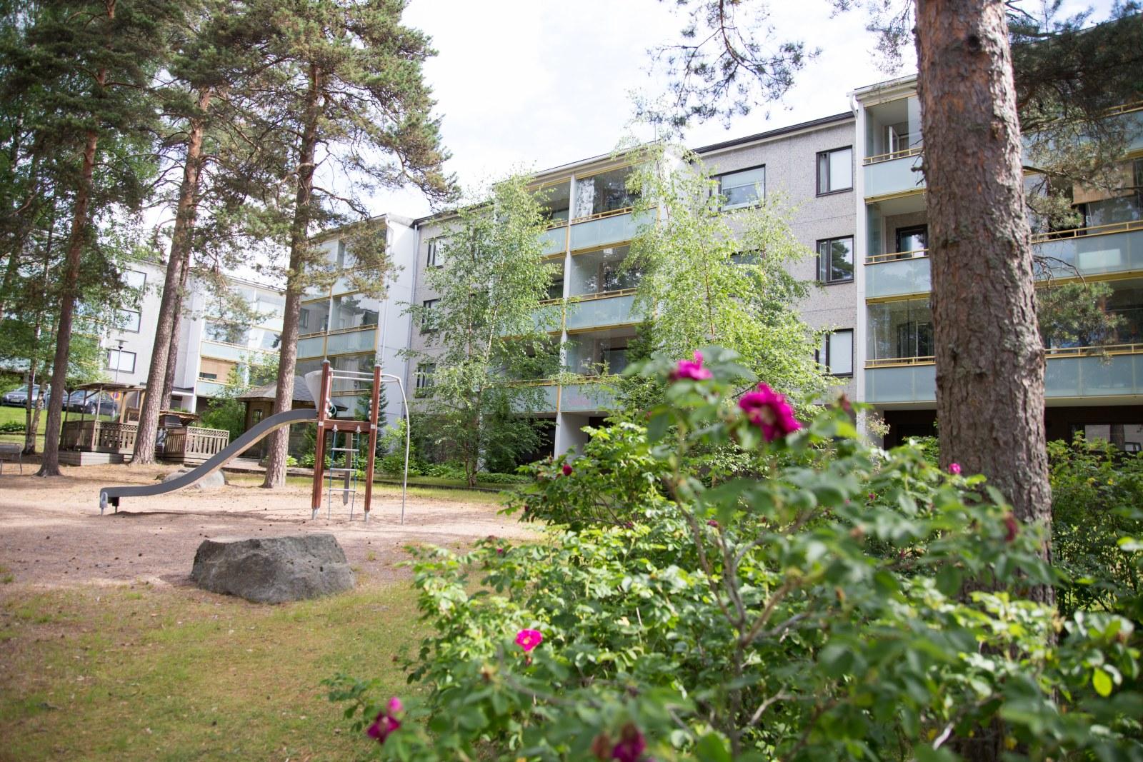 Kotkan Asunnot Äijänkatu 6 Kotka vuokrakodit
